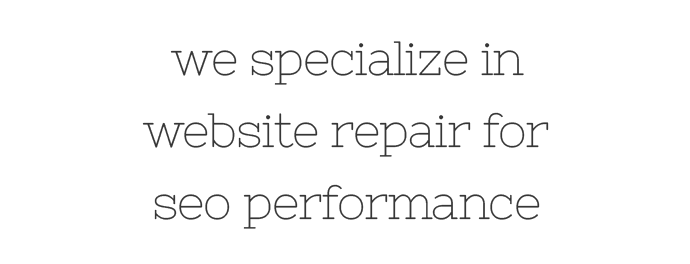 website repair for seo is our specialty